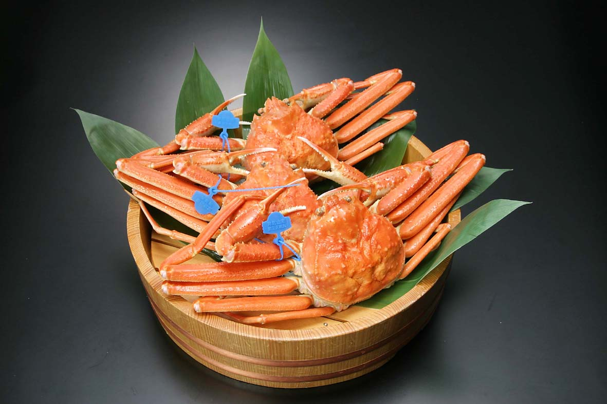 Matsubagani Snow Crab produced in the Sea of Japan