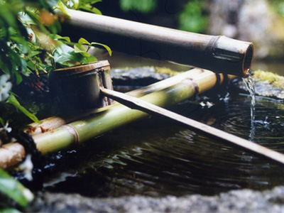 Japanese Water: source of life, source of wisdom